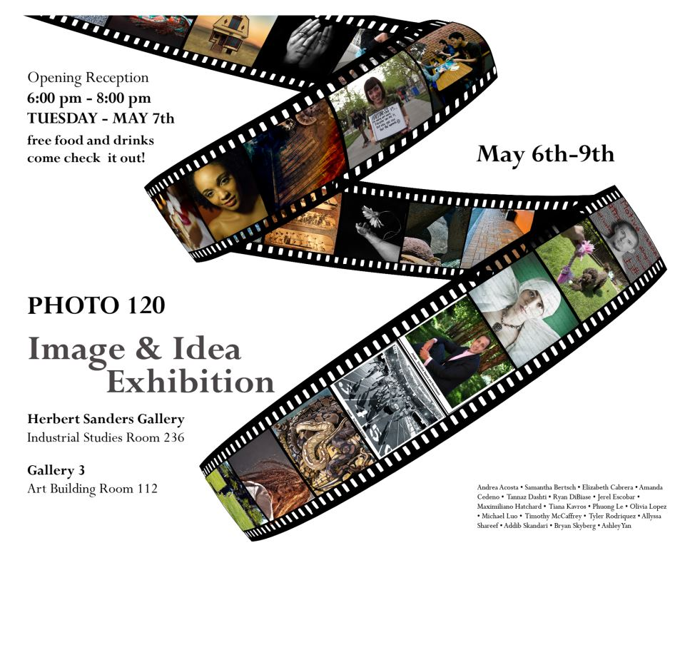 The Image & Idea Exhibition - Spring 2013